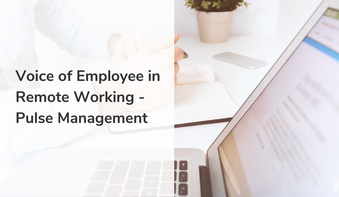 Voice of Employee in Remote Working – Pulse Management